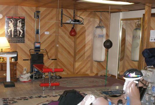 Natures Inn at Big Bear Lake, Ca Gym Room